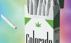 CANNABIS IN AMERICA: COLORADO POT RUSH