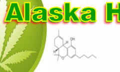 facebook - Hemp for Alaska