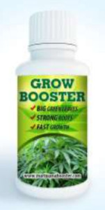 growboost